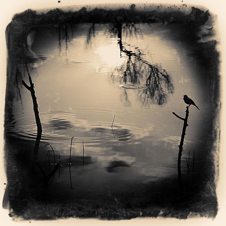 Silence - Image 0
