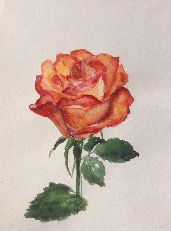 Rose - Image 0