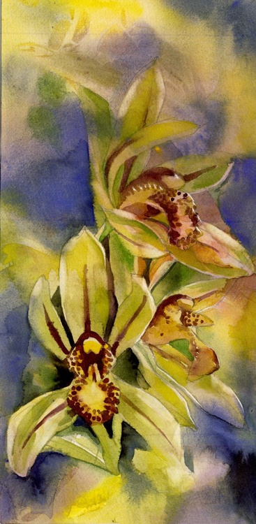 Green cymbidium orchid with blues - Image 0