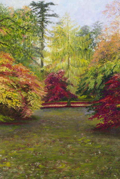 Westonbirt Trees - Image 0