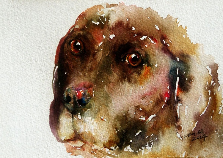 Chocolate Dog - Image 0