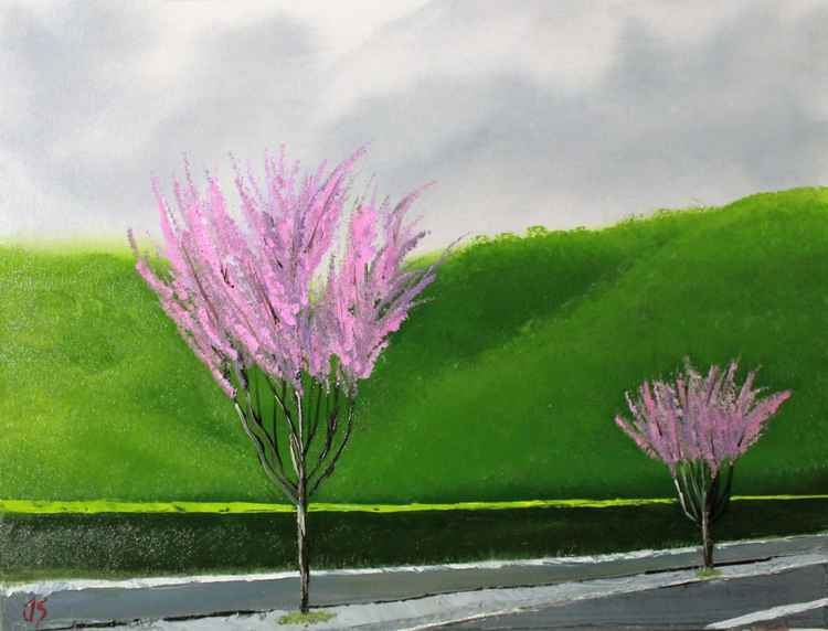Roadside pinks -