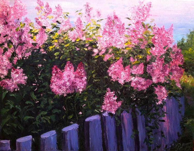 Pink lilac - Image 0