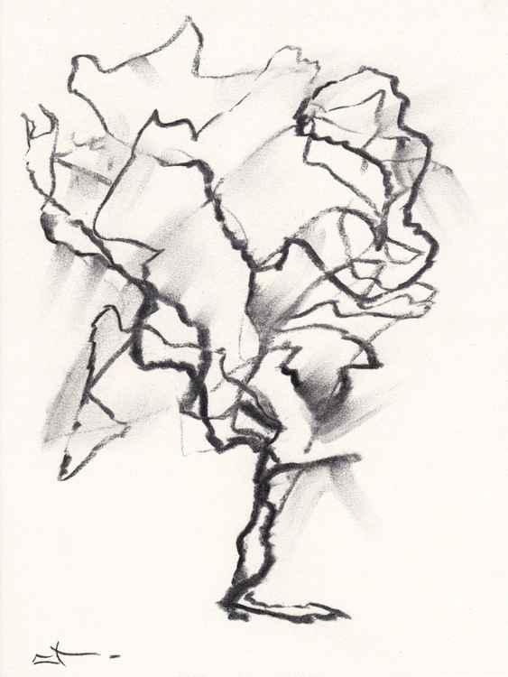 Etude d'arbre -