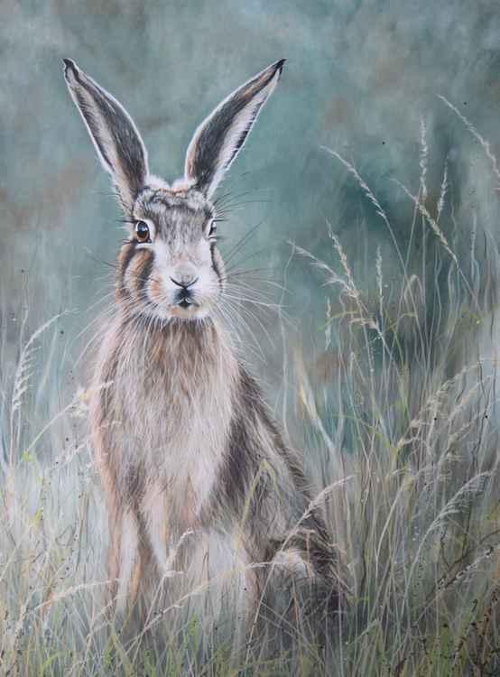'Haughty Hare' -