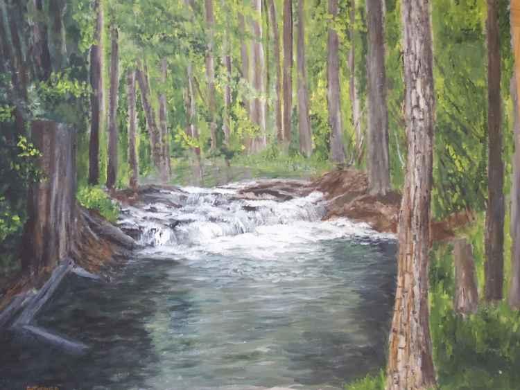 alaska woods
