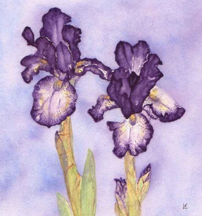Gilded Iris