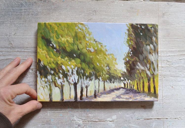Walking along the Garden in Villa Fidelia Umbria Italy - Image 0