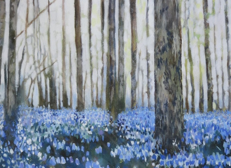 Bluebell Woodland, Kent 2013, Limited Edition Giclee Print - Image 0