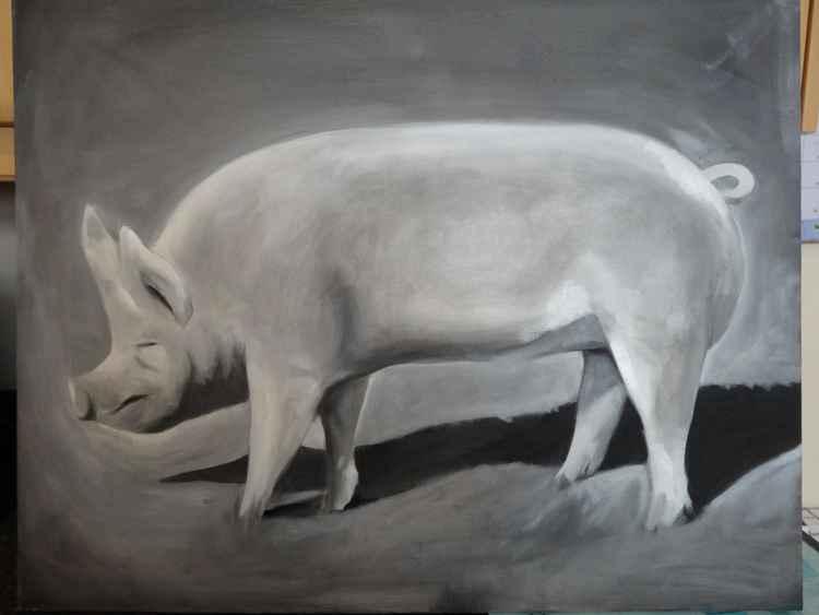 Pig -