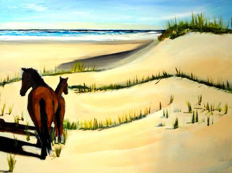 Wild Horses on the Outer Banks -