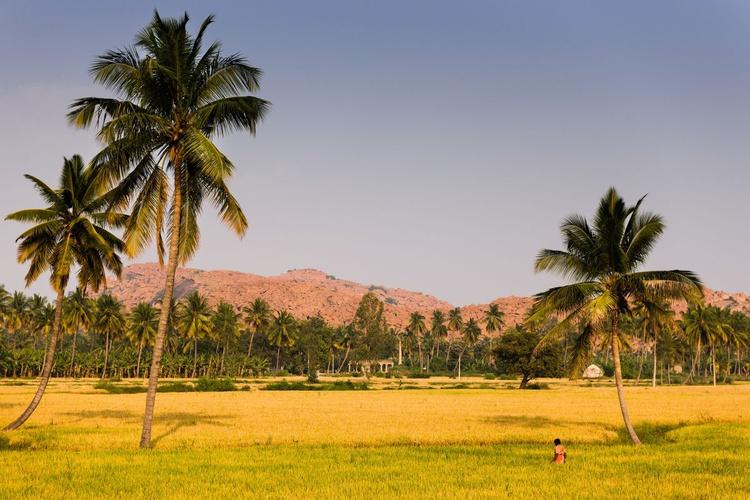 Anegundi, India. (119x84cm) - Image 0