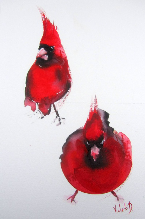 Study of a Male Northern Cardinal - Image 0