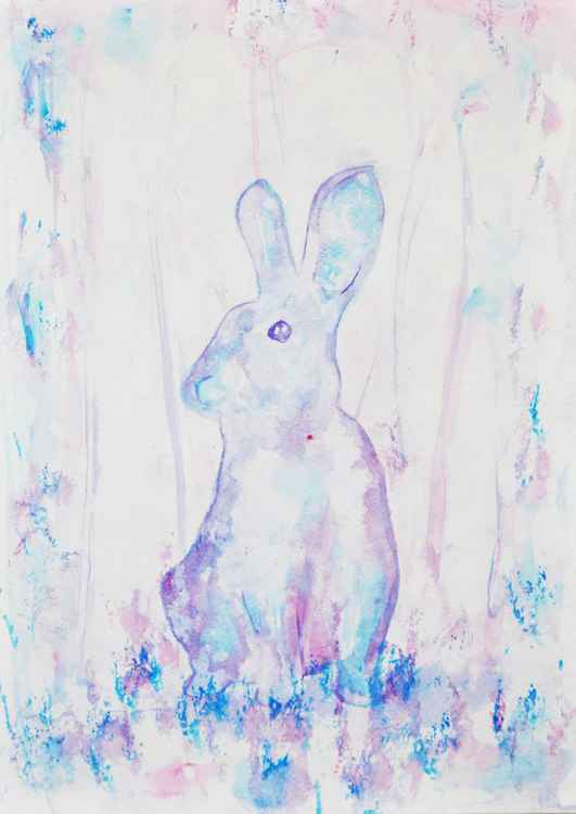 Rabbit Study 01