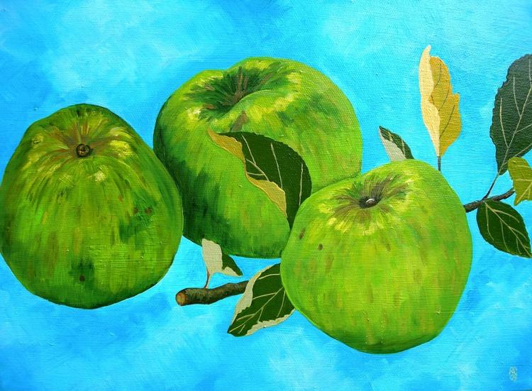 Bramley Apples - Image 0