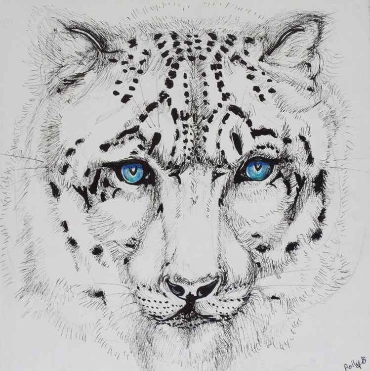 leopard portrait -