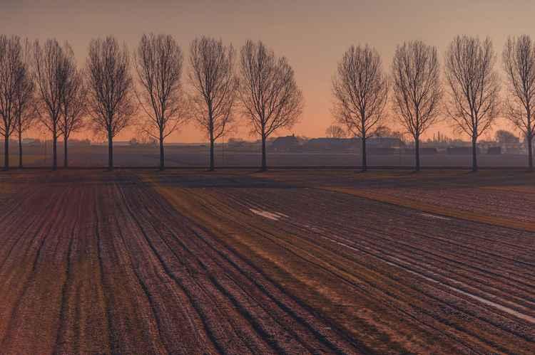 Velvet Sunset On Zen Road  (Ltd Edition of only 20 Fine Art Giclee prints from an original photograph)