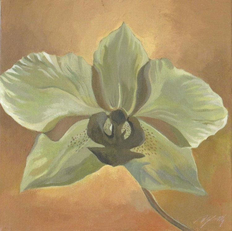 a gentle orchid - Image 0