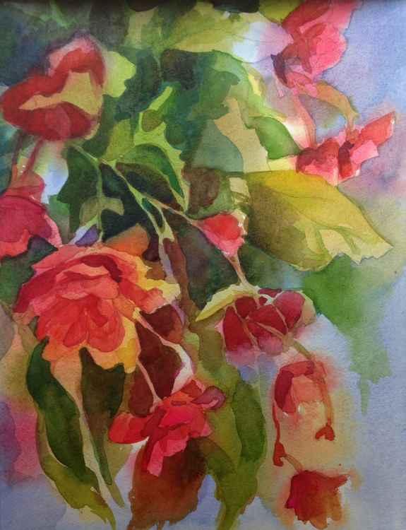 Summer Garden -