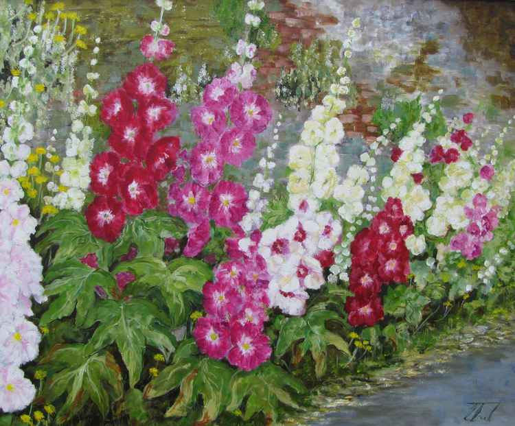 Hollyhocks standing tall -