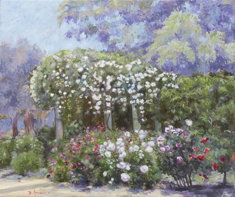 Roses in a garden - Image 0