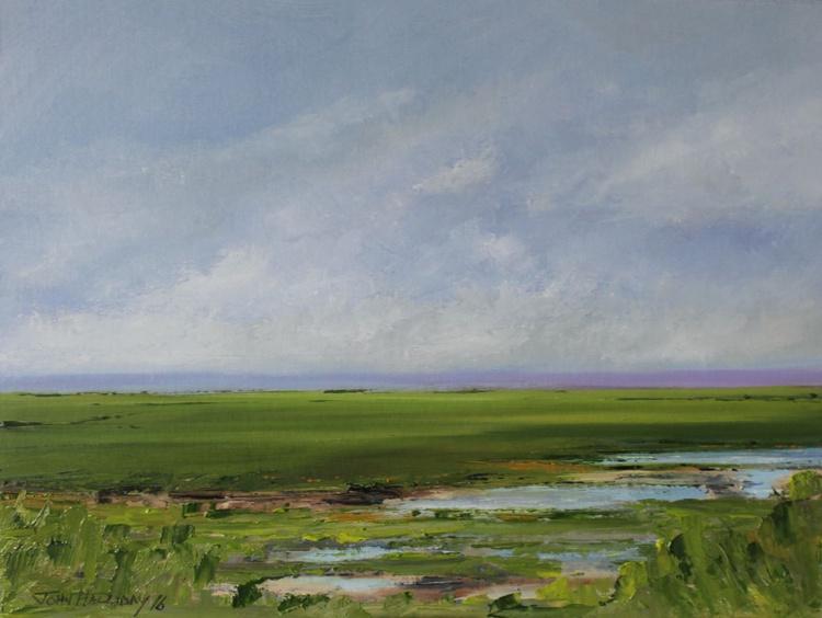 Wetlands - Image 0