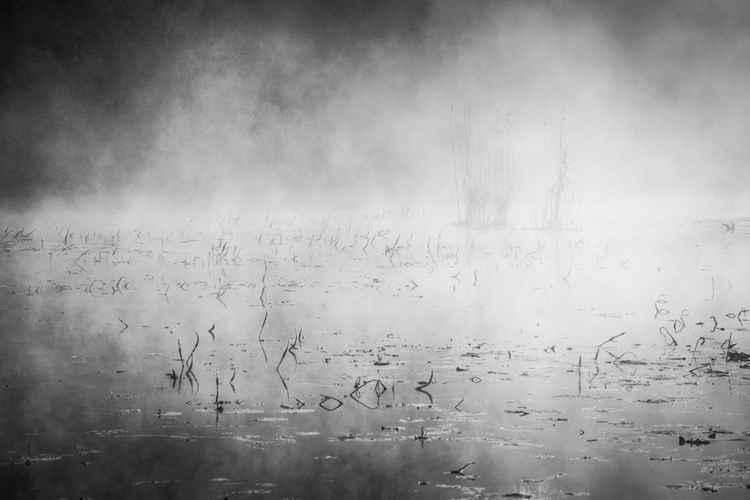Landscape13 -