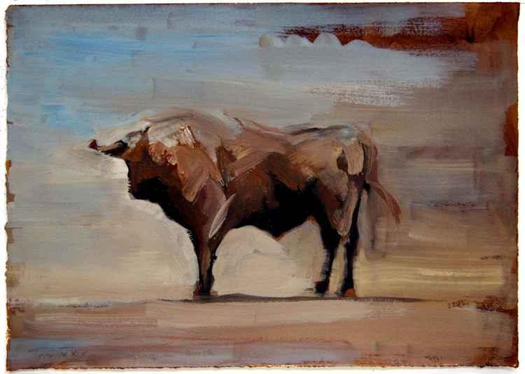 Toro XXIX (study) -