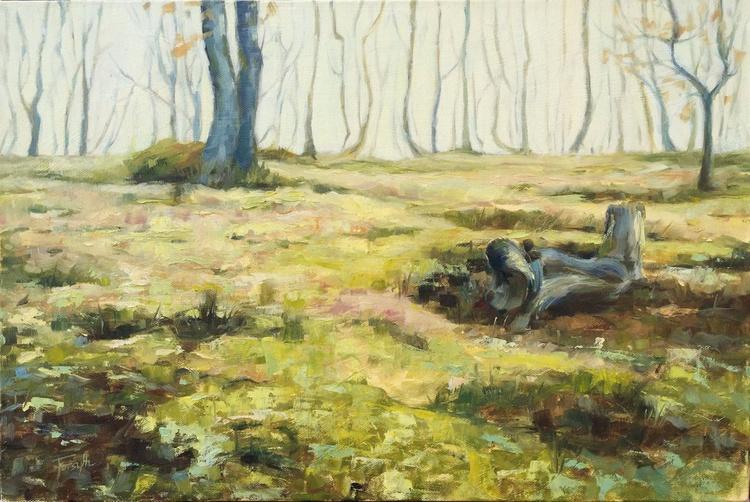 Misty Forest - Image 0