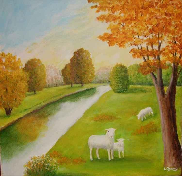 Sheep Grazing -