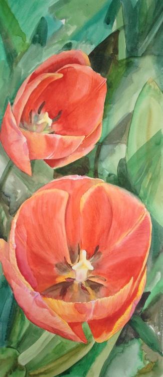 Dancing tulips - 3 - Image 0