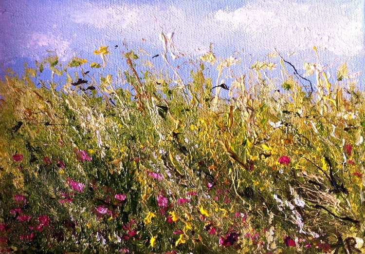 Meadow 9 - Image 0