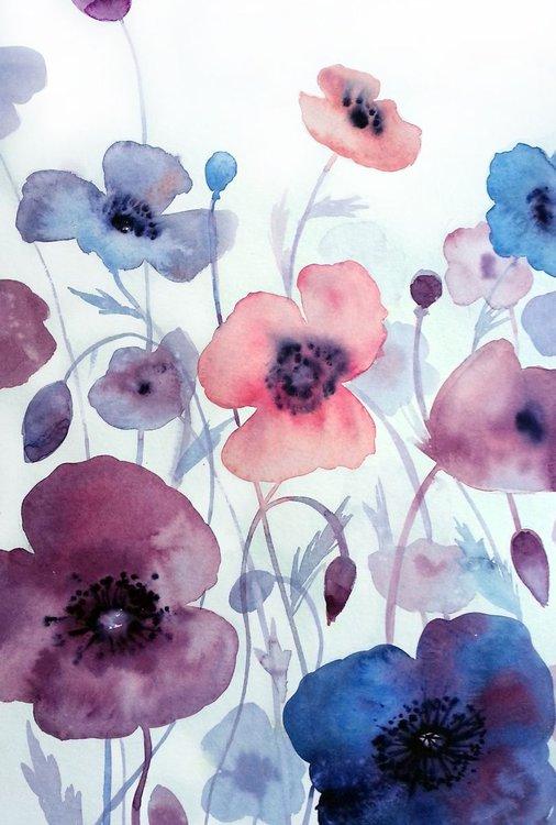 purple poppies 2 violet watercolor flowers artfinder