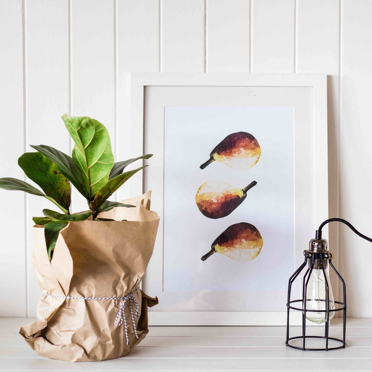 Comice Pear - Image 0