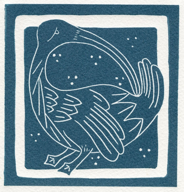 Halcyon Bird - Image 0