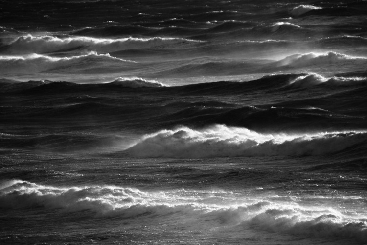 """""""Heart of the Sea  2016  1"""" - Image 0"""