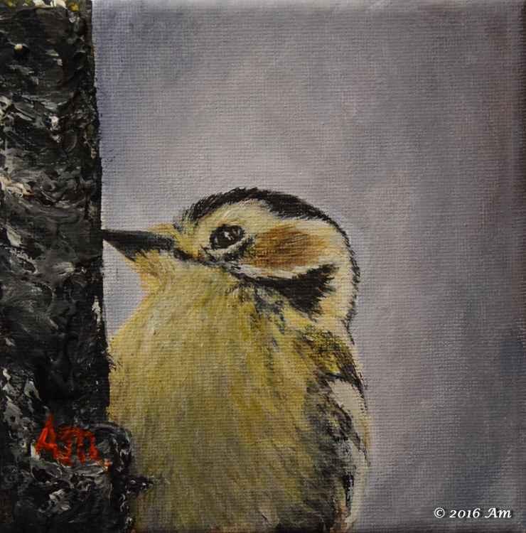 Woodpecker -