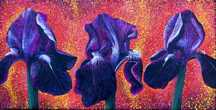 Purple Irises - Image 0