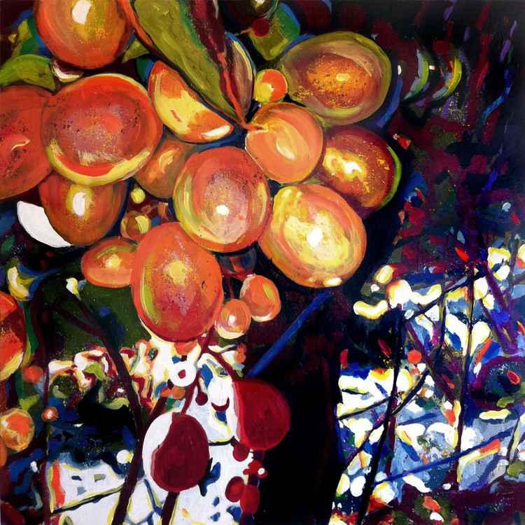 Vineyard Light -