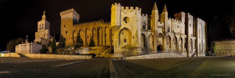 Avignon and the palace of the popes - Image 0