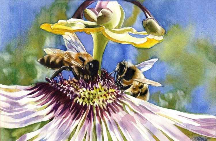 Passionate bees - Image 0
