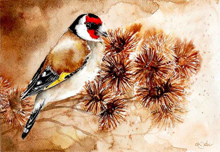 Goldfinch,   Watercolor painting -