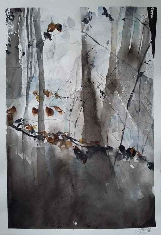 Watercolors 4 -