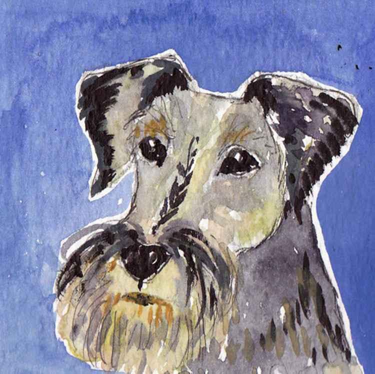 Terrier -