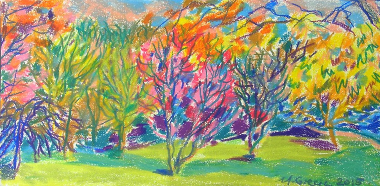 Autumn is near in Roath park - Image 0