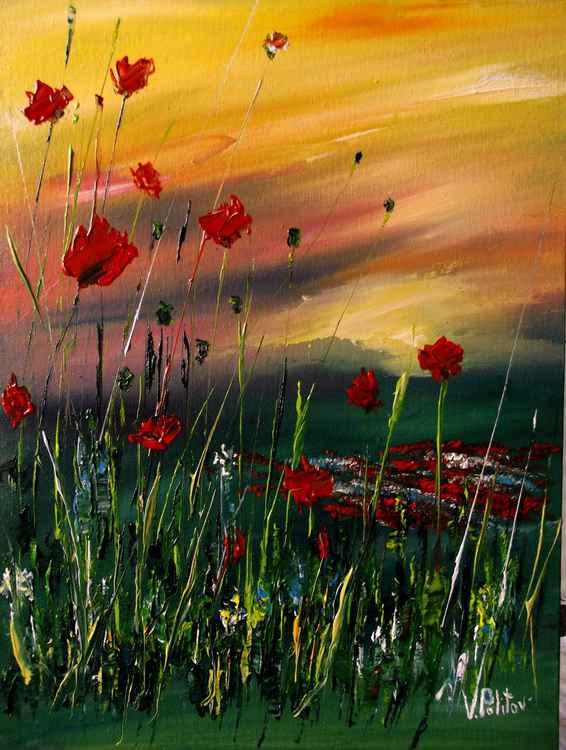 """""""Poppy field """""""