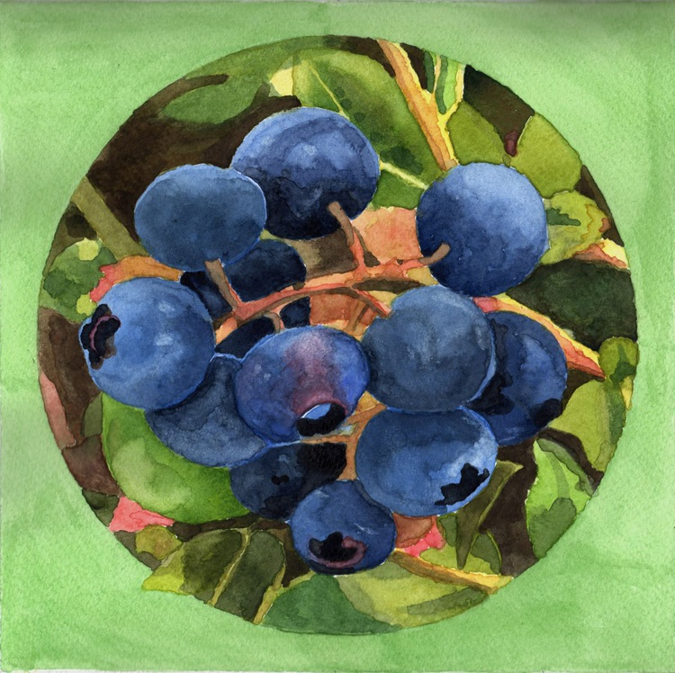 BLUEBERRIES - Image 0