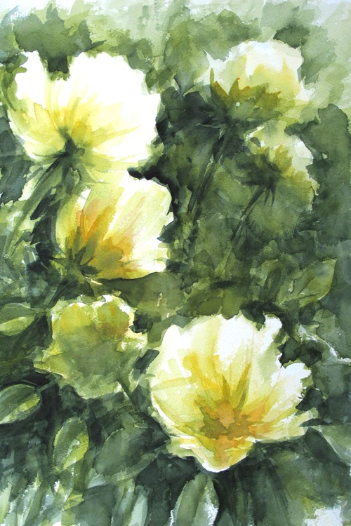 Pale yellow flowers - Image 0