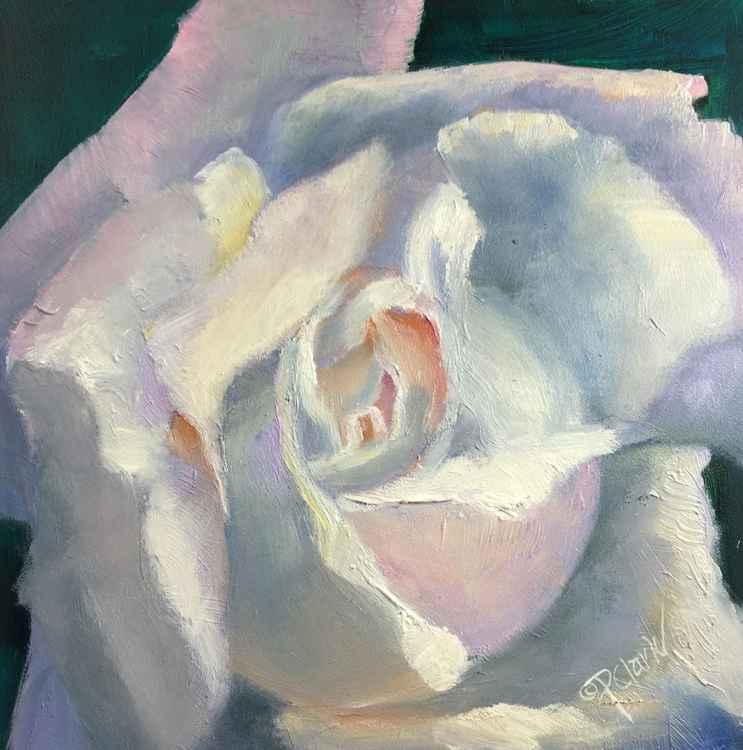 Rose Glow -