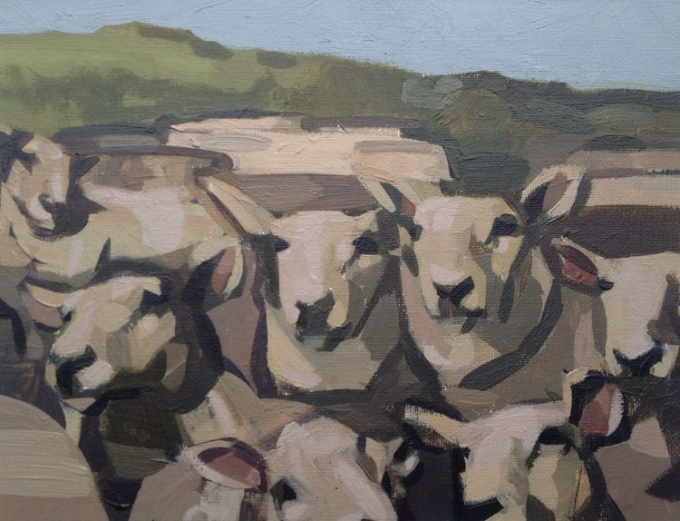 A Yorkshire Flock - Image 0